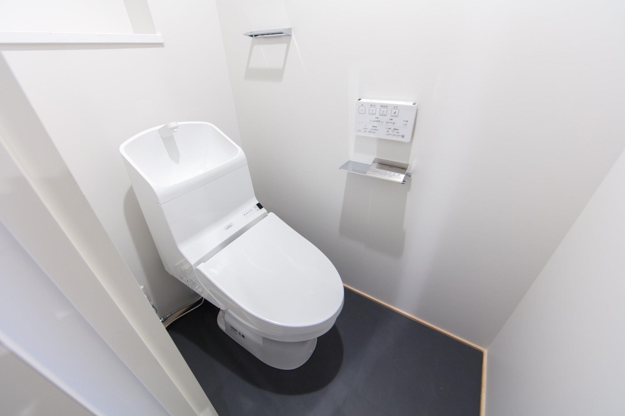 ロイヤルシャトー泉本町 / トイレ